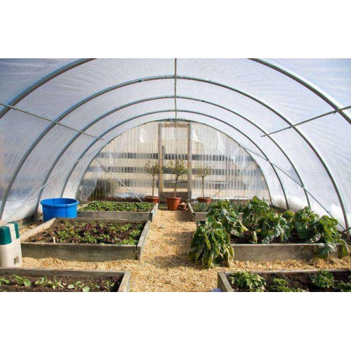 CUSTOM LENGTH 56' WIDE Greenhouse Film 4 year 6 mil clear sheeting