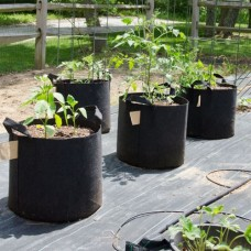 3 Gallon heavy duty Aeration Fabric Pots with Handles.  Non - Woven Grow bags, 10 PACK